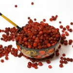 Fresh cranberries mix with sweet jello to create an addictive side. Photo courtesy of http://www.stockfreeimages.com/