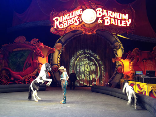 Ringling Brothers Circus Moms