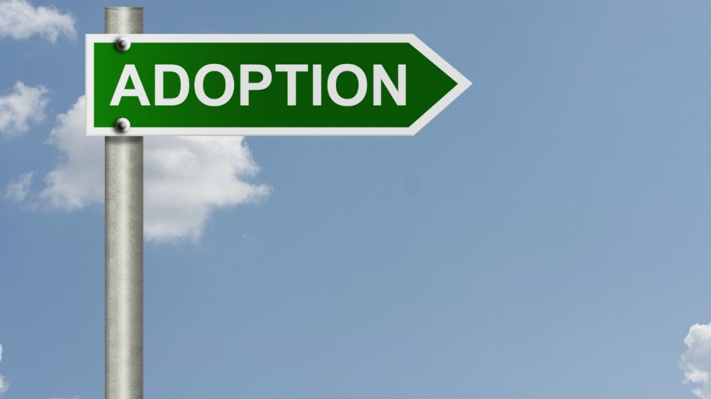 5 Things to Know About the Adoption Process